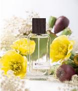 Parfum 50 ml - PURITATE (Figue & Bergamote) / Pumo Pugliese